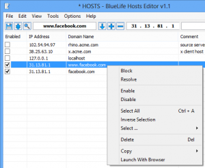 BlueLifeHosts editor 1.2 - náhled