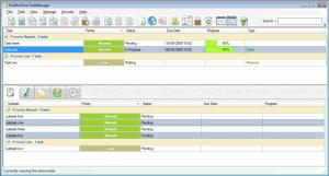 FruitfulTime TaskManager 2.5.1 - náhled