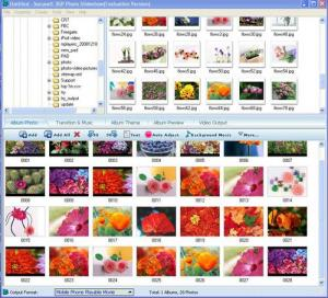 Socusoft 3GP Photo Slideshow 8.0 - náhled