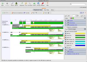 Geneious Pro 5.0.4 - náhled