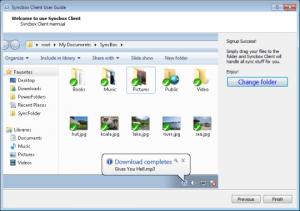 Syncbox 0.3.1.2502 - náhled