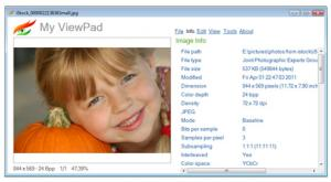 My ViewPad 4.1 - náhled