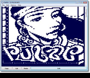 GetDiz 4.8 - náhled