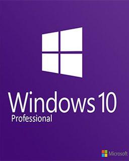 Windows 10 Professional OEM - Plná verze - 1 licence
