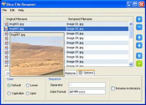 Bica File Renamer - náhled