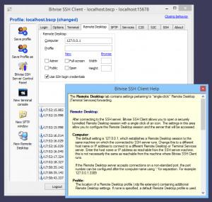 Bitvise SSH Client - náhled