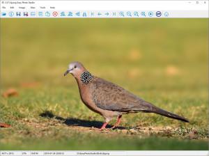 Easy Photo Studio - náhled