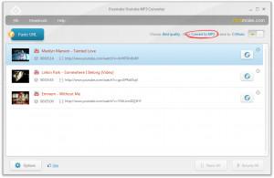 Freemake YouTube MP3 Converter - náhled