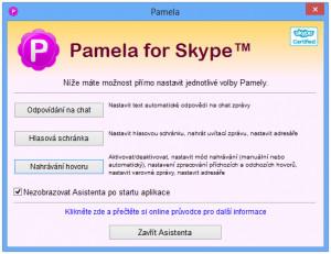 Pamela for Skype - náhled