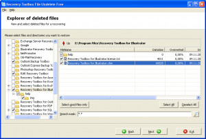 Recovery Toolbox File Undelete Free - náhled