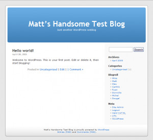 WordPress - náhled