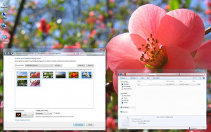Czech Spring Windows 7 Theme - náhled
