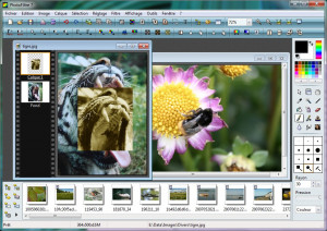PhotoFiltre Studio - náhled