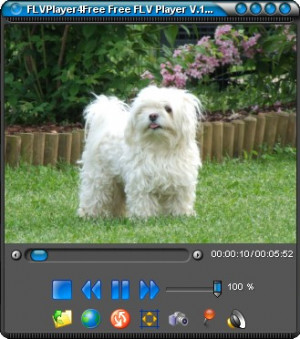 FLVPlayer4Free - náhled