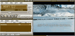Total Video Player - náhled
