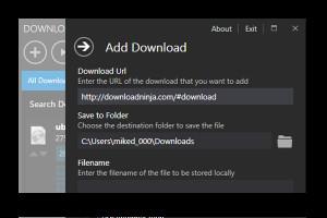 Download Ninja - náhled