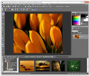 Corel PaintShop Pro - náhled