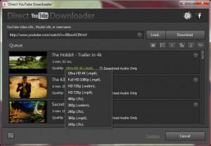 Direct YouTube Downloader - náhled