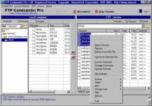 FTP Commander - náhled