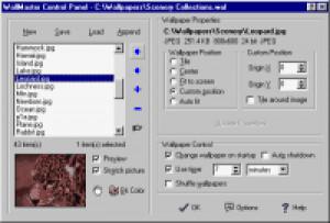 WallMaster Pro - náhled