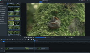 Luxea Video Editor - náhled