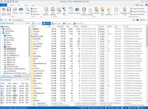 FolderSizes - náhled