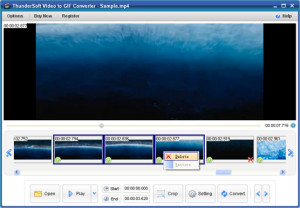 ThunderSoft Video to GIF Converter - náhled