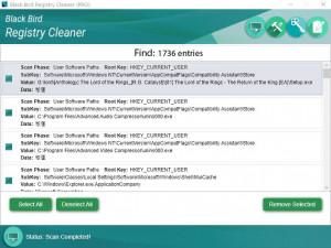 Black Bird Registry Cleaner - náhled