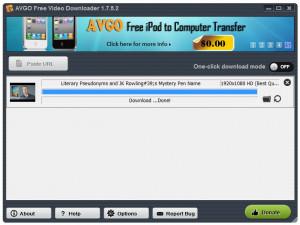 AVGO Free Video Downloader - náhled