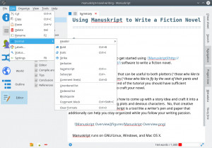 Manuskript - náhled