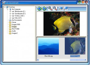 SID Image Viewer - náhled