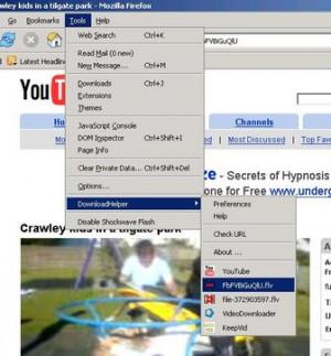 Video DownloadHelper - náhled