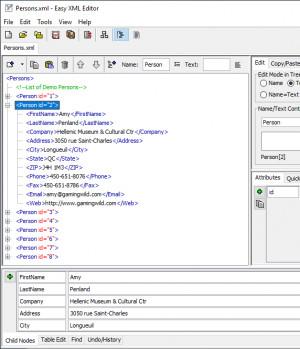 Easy XML Editor - náhled
