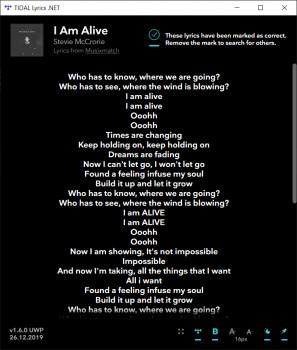 TIDAL Lyrics .NET - náhled