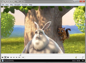 Media Player Classic - náhled