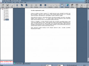 PDF Text Viewer - náhled