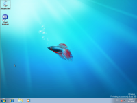 Windows 7 Beta 1 - plocha