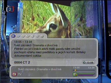 Homecast T3000 info II