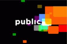 Public TV 1