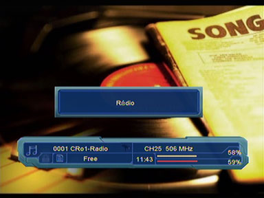 Optimum 800 radio