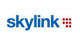 SkyLink logo 2008 velké barevné