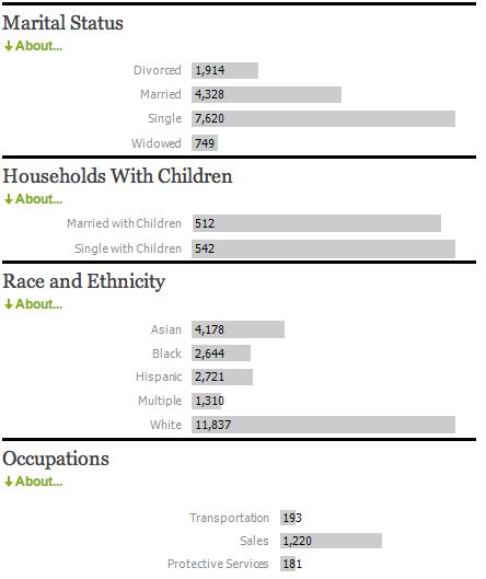 Cyberhomes demografie