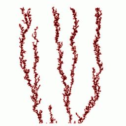 fractals44_2