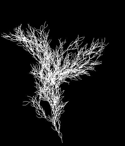 fractals55_9
