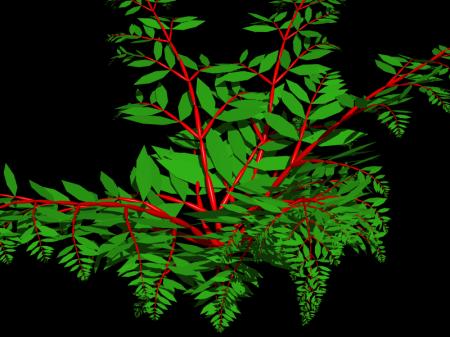 fractals57_4