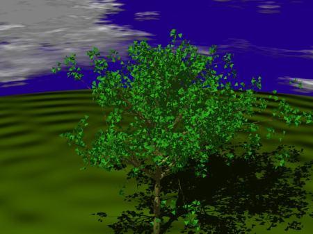 fractals60_6