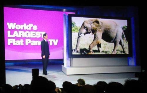 Plazmová televize, největší na světě